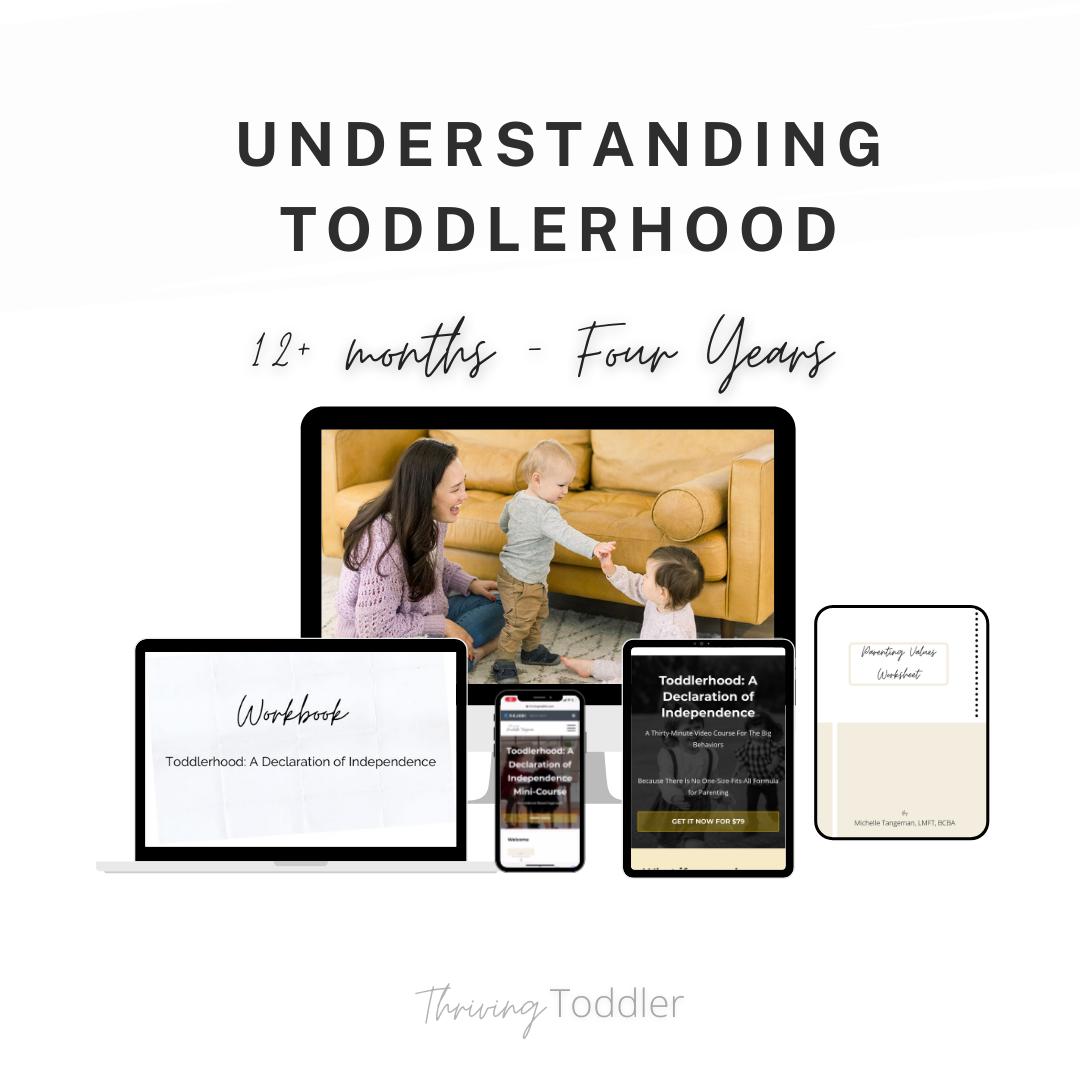 Understanding Toddlerhood